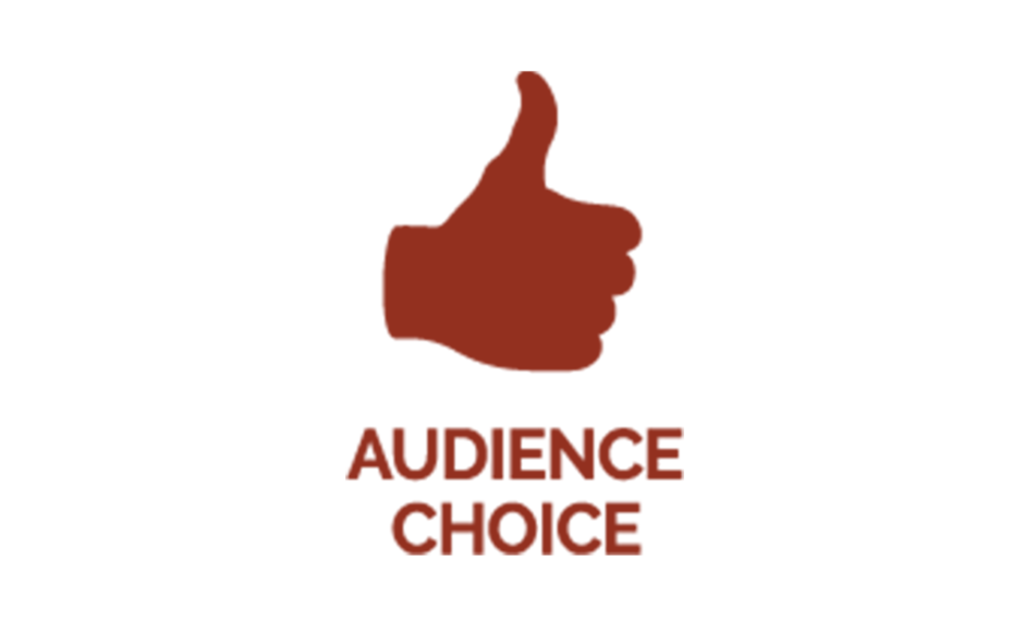 Our first award – Audience Choice